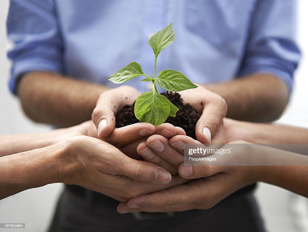 Nurturing growth and development : Stock Photo