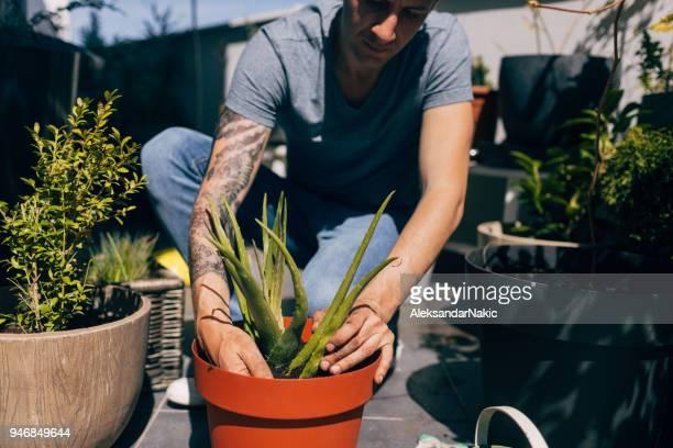 Cultivar mis plantas
