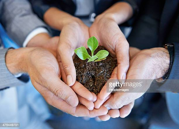 nurturing the business together - responsible business stock photos and pictures