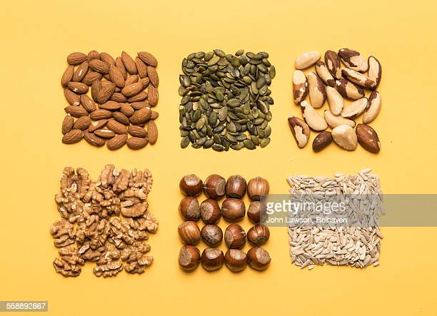 nuts and seeds, neatly organised - nut food stock pictures, royalty-free photos & images