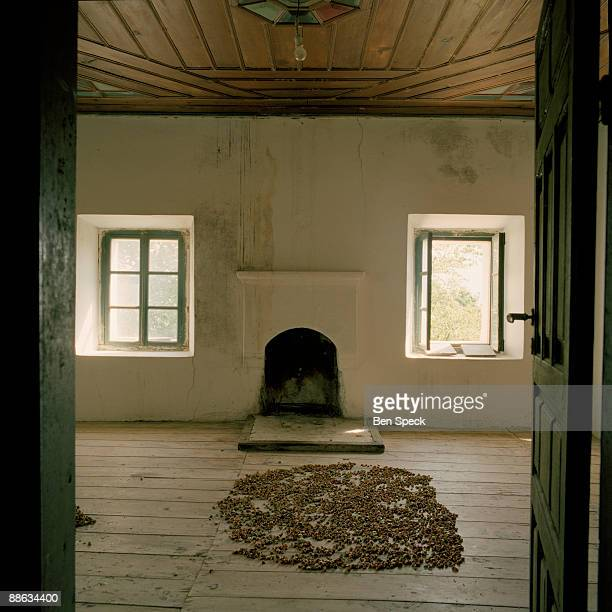 Nuts drying in an empty upstairs room in Hata Mania's house which is vast and allegedly 300 years old Being a sworn virgin means that she can have no...