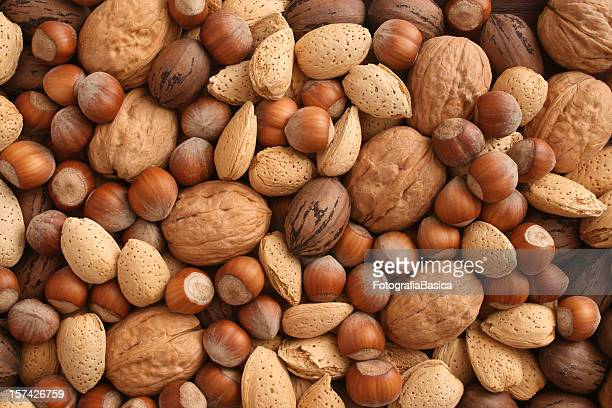 nuts - nut food stock photos and pictures