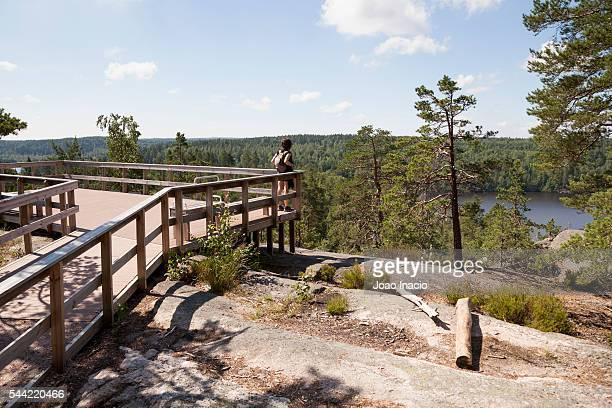 nuuksio national park, finland - espoo - fotografias e filmes do acervo
