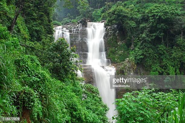 Nuwara Eliya Wasserfälle