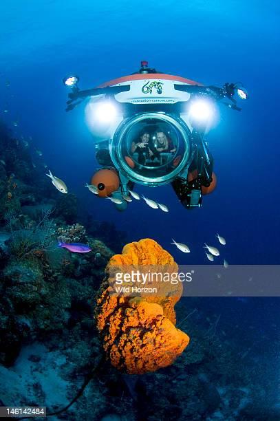 Nuytco Curacao minisubmarine cruising over an elephant ear sponge Curacao Netherlands Antilles