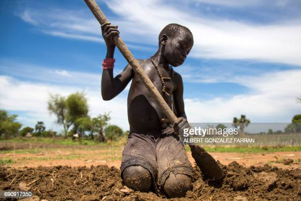 TOPSHOT Nyibol Lual 13 years old helps her family to prepare the land for cultivation on May 31 in Panthau Northern Bahr al Ghazal South Sudan The...
