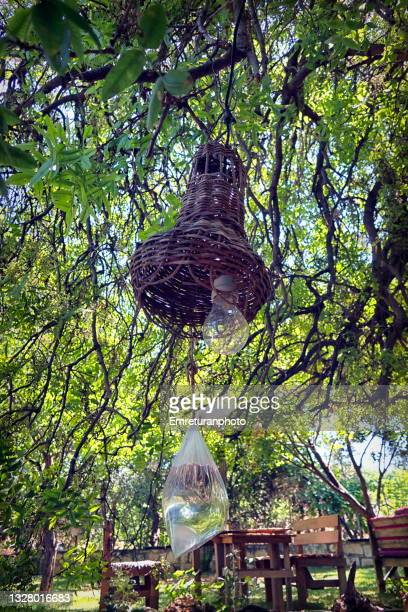 nylon bag filled with water under a lamp under the tree. - emreturanphoto stock pictures, royalty-free photos & images