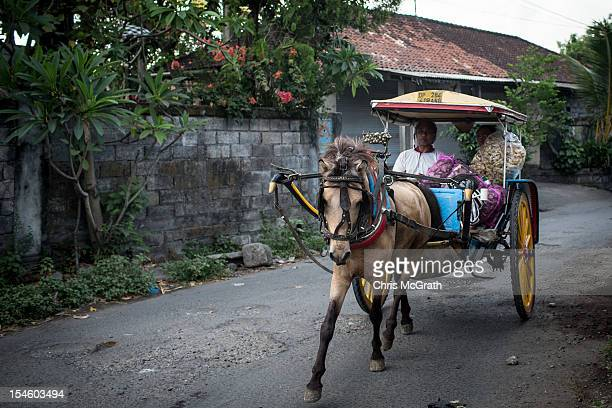 Nyoman Mantra Manik makes deliveries on October 14 2012 in Denpasar Bali Indonesia The Dokar is traditional local transport used in Denpasar In the...