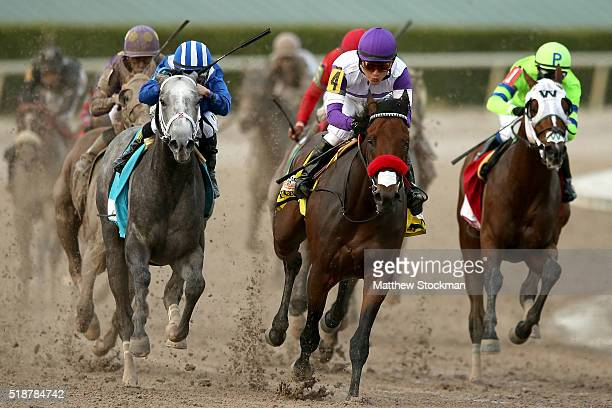 Nyquist riden by Mario Gutuerrez leads Mohaymen riden by Junior Alvarado out of turn four during the 2016 Florida Derby at Gulfstream Park April 2...
