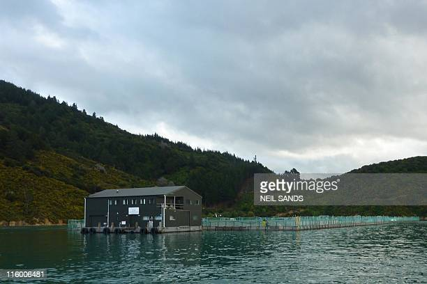 STORY 'NZealandfishingenvironmentFEATURE' by Neil Sands A general view shows a fish farm operated by New Zealand King Salmon near Picton on May 13...