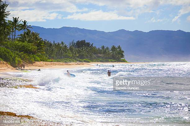 oahu the vibrant island - north shore stock photos and pictures
