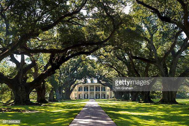 Oak Alley plantation antebellum mansion house and canopy of live oak trees in Mississippi Delta at Vacherie Louisiana USA