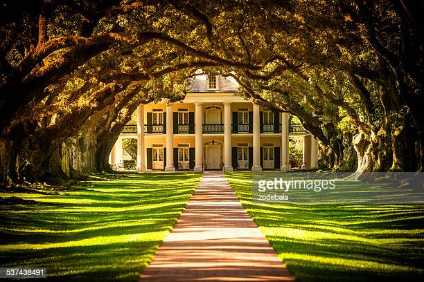 oak alley plantation house in louisiana, usa - southern usa stock pictures, royalty-free photos & images