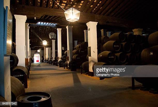 Oak barrels of maturing sherry wine in cellar Gonzalez Byass bodega Jerez de la Frontera Cadiz province Spain