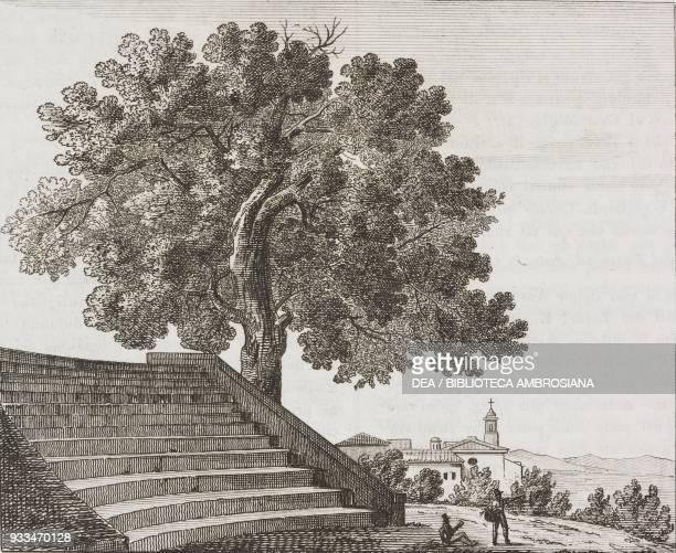 Oak of Torquato Tasso Janiculum Rome Italy engraving from L'album giornale letterario e di belle arti Saturday August 27 Year 3