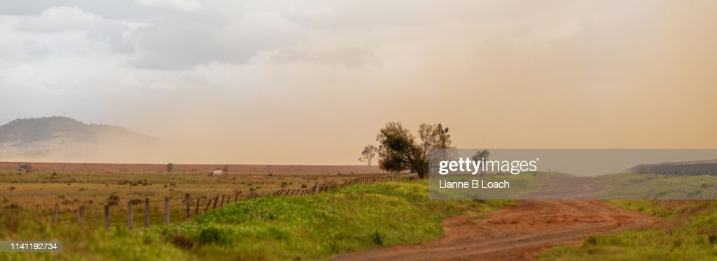 Oakey Dust : Stock Photo
