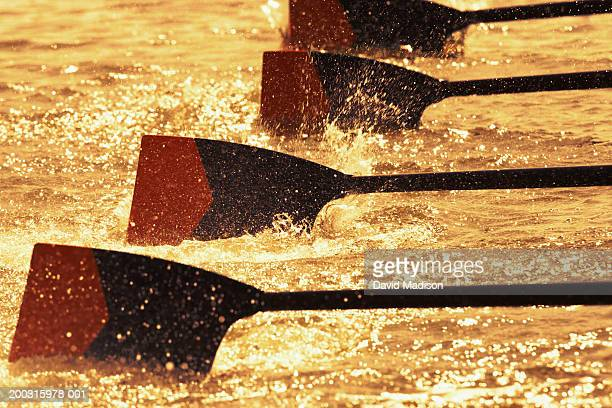 Oar blades from racing crew cutting through water, close-up