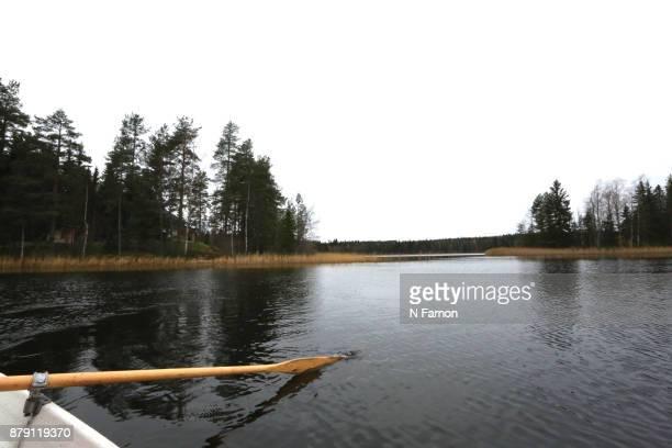 Oar in the lake