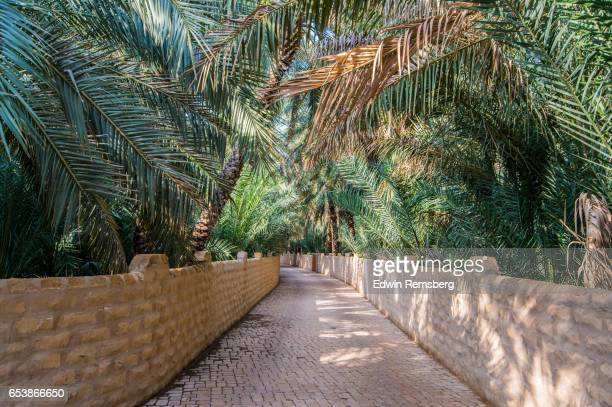 oasis bridge - アブダビ アルアイン市 ストックフォトと画像