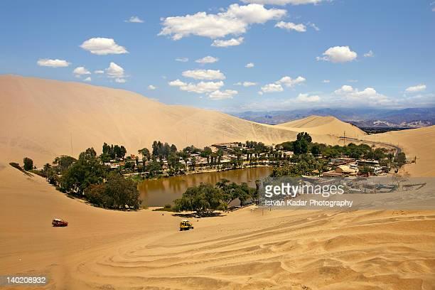 oasis in desert - oasis fotografías e imágenes de stock