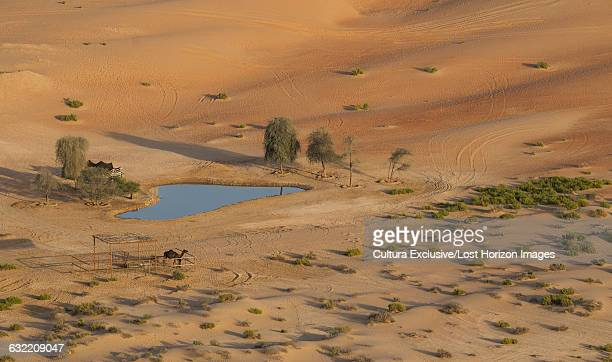 Oasis in the Empty Quarter Desert, between Saudi Arabia and Abu Dhabi, UAE
