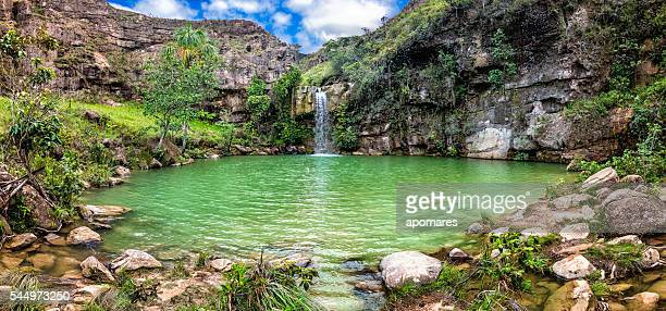 oasis or quebrada pacheco waterfall. la gran sabana venezuela - venezuela stock pictures, royalty-free photos & images