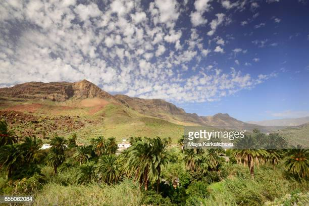 Oasis paradise village at Gran Canaria, Canary islands