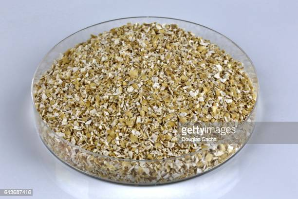 oat bran (avena sativa) - rolled oats stock photos and pictures
