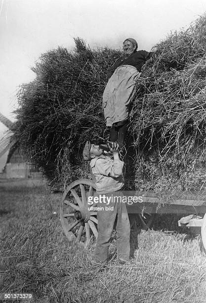 Oat harvest Woman is going to slide down from a hay cart a man is supporting her undated probably 1900