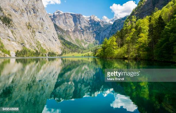obersee, water reflection, salet on lake koenigssee, national park berchtesgaden, berchtesgadener land, upper bavaria, bavaria, germany - berchtesgaden stock pictures, royalty-free photos & images
