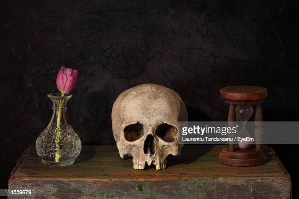 objects on table against black background - human skull stock pictures, royalty-free photos & images