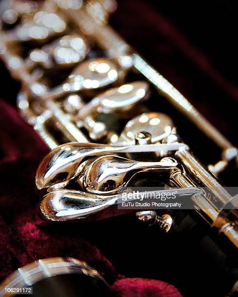 oboesity - oboe stock-fotos und bilder