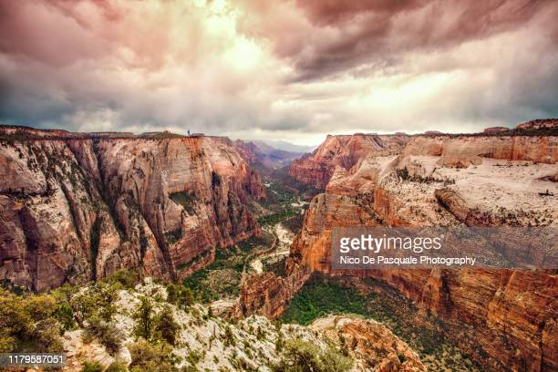 observation point, zion park - utah stock pictures, royalty-free photos & images