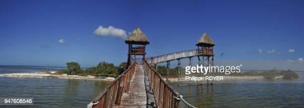 observatoire pour oiseaux ile de Holbox Cancun Mexique observatory for birds Holbox island Cancun Mexico