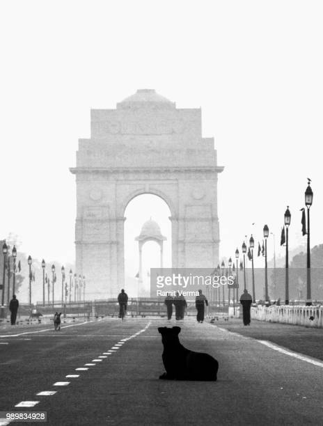 observe. - india gate stock pictures, royalty-free photos & images
