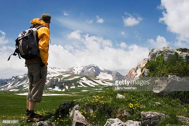 observing the mountain view from the green valley - kaukasus geografische lage stock-fotos und bilder