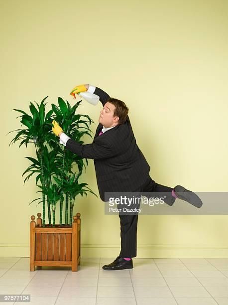 Obsessive business man water indoor plants