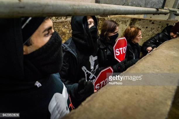 Occupation of the slaughterhouse of Corbas near Lyon France on November 10 by the association 269 Life Libération Animale Twenty activists occupied...