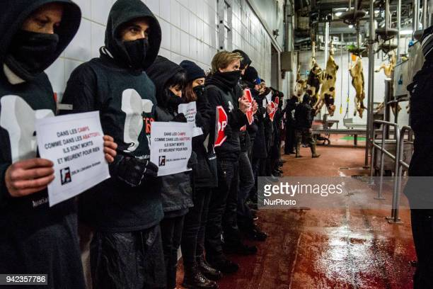 Occupation of the slaughterhouse of La Talaudière near Saint Etienne France on December 19th 2016 by about forty members of the association 269 Life...