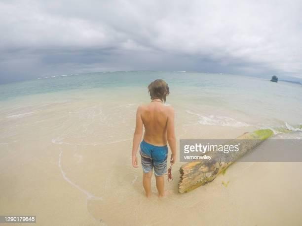 avventura oceanica nella bellissima bocas del toro, panamam. - vertebrato foto e immagini stock