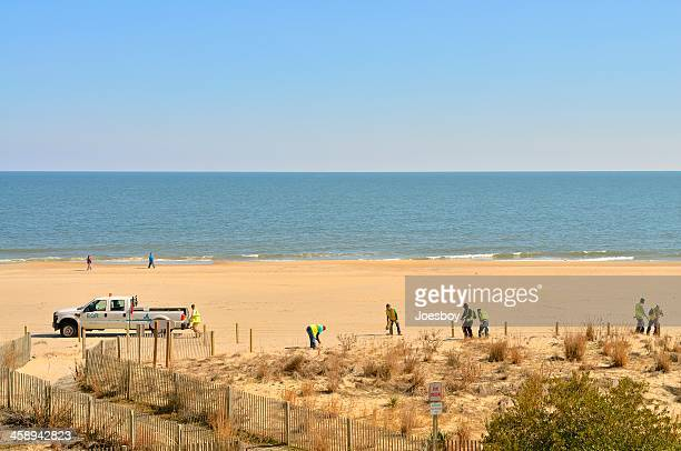 ocean city maryland beach restoration - ocean city maryland stock pictures, royalty-free photos & images