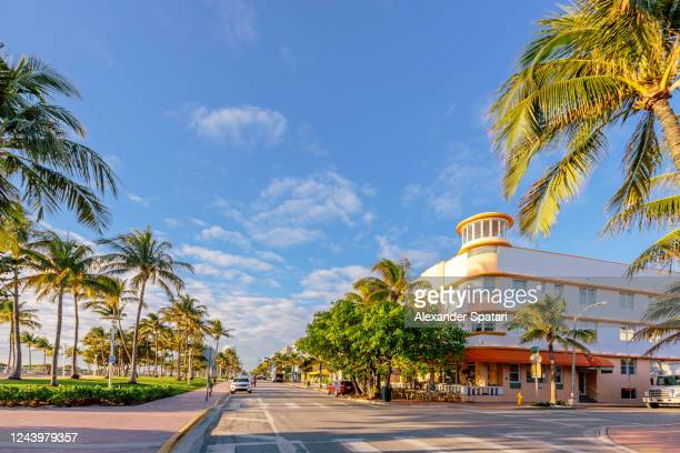 ocean drive and lummus park early in the morning, south beach, miami, usa - miami stock pictures, royalty-free photos & images