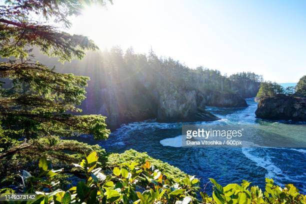 ocean glow - cape flattery stock photos and pictures
