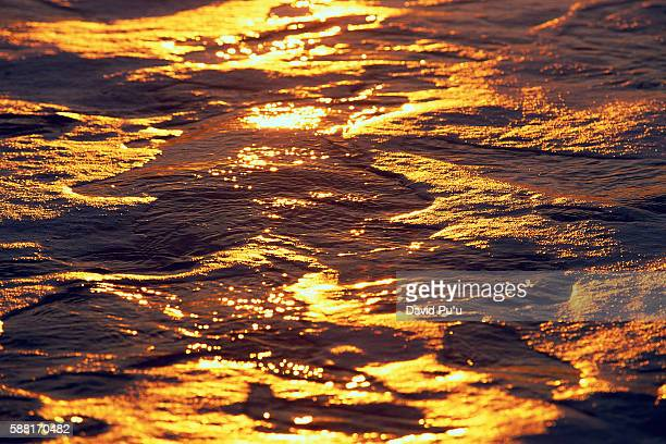 Ocean Reflecting Sunshine
