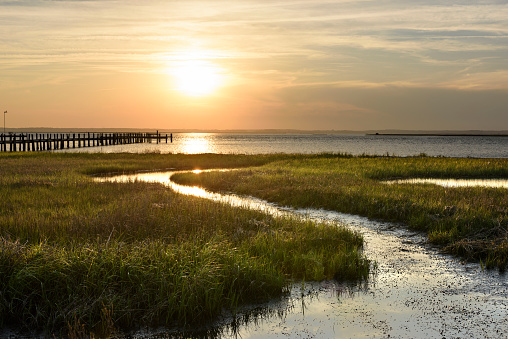 Ocean salt marsh with sea grass and dock at sunset 687192860