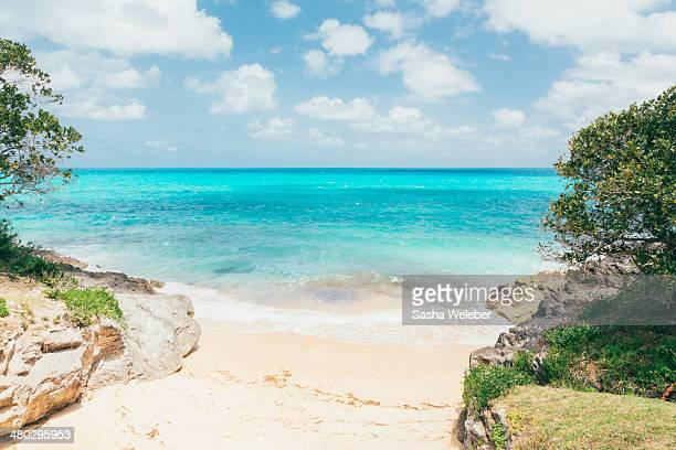 Ocean, sand, and sky in Bermuda