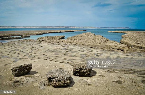 ocean shore - patagonia argentina - radicella stock photos and pictures