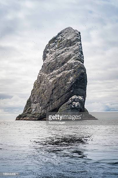 ocean stack sea bird colony st kilda western isles scotland - gannet stock photos and pictures