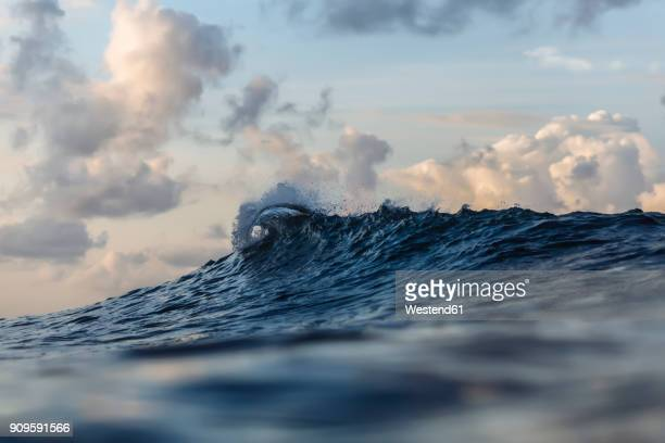 ocean surf - wave stock pictures, royalty-free photos & images