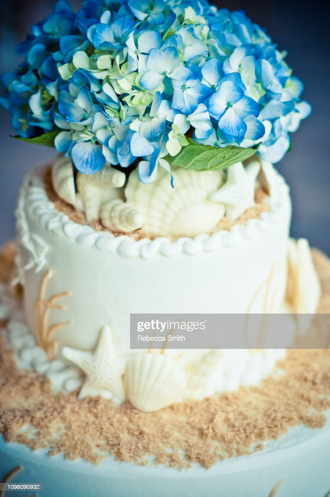 Fine Ocean Themed Wedding Cake High Res Stock Photo Getty Images Funny Birthday Cards Online Hendilapandamsfinfo